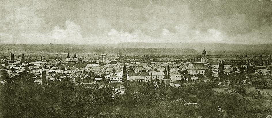 Baia Mare Kunstikeskus Panorama Baia Mare anii 1890