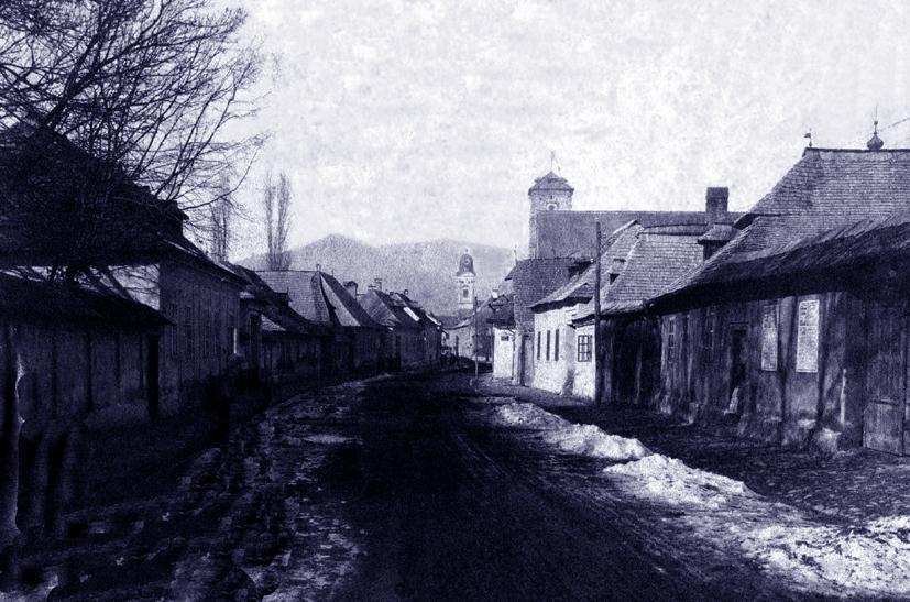 foto 3 Baia Mare 1880 anii Str Crisan cu T Stefan
