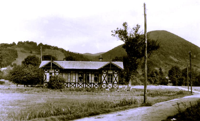 foto 5 Baia Mare anii 1910 Campul Tineretului cu Patinoar vara